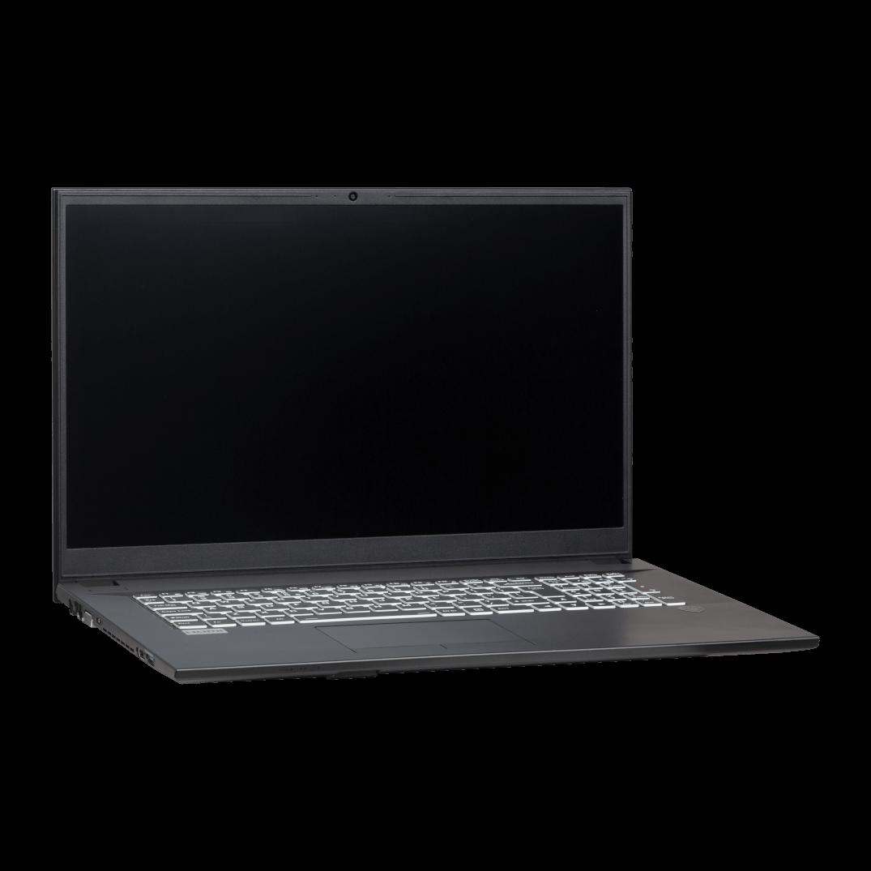 Clevo NJ70CU Ubuntu Linux Laptop